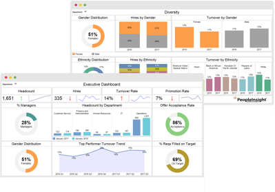 Exec Summary and Diversity Dashboards