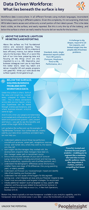 Data Driven Workforce download preview